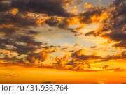 Купить «Heavenly summer background. Beautiful bright majestic dramatic evening sky at sunset or sunrise orange and blue with rays. The sun shines over the horizon against the backdrop of thunder clouds», фото № 31936764, снято 28 июня 2019 г. (c) Светлана Евграфова / Фотобанк Лори