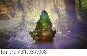 Купить «Silhouette of a woman mediating in the woods», видеоролик № 31937008, снято 17 апреля 2019 г. (c) Wavebreak Media / Фотобанк Лори