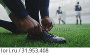 Купить «Rugby player tying shoelaces in the stadium 4k», видеоролик № 31953408, снято 9 мая 2019 г. (c) Wavebreak Media / Фотобанк Лори