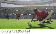 Купить «Rugby players playing rugby match in stadium 4k», видеоролик № 31953424, снято 9 мая 2019 г. (c) Wavebreak Media / Фотобанк Лори