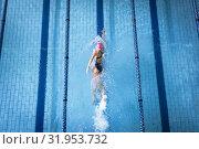 Купить «Swimmer in a pool», фото № 31953732, снято 24 марта 2019 г. (c) Wavebreak Media / Фотобанк Лори