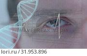 Купить «Man and DNA double helix with a heart line», видеоролик № 31953896, снято 21 июня 2019 г. (c) Wavebreak Media / Фотобанк Лори