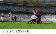Купить «Rugby players playing rugby match in stadium 4k», видеоролик № 31953916, снято 9 мая 2019 г. (c) Wavebreak Media / Фотобанк Лори