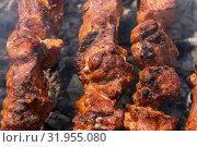 Купить «Свиной шашлык на шампуре», фото № 31955080, снято 14 июля 2019 г. (c) А. А. Пирагис / Фотобанк Лори