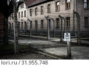 Купить «Barrack and barbed wire fence, prison Auschwitz II», фото № 31955748, снято 7 мая 2019 г. (c) Tryapitsyn Sergiy / Фотобанк Лори