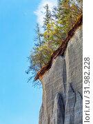 Купить «Интересный природный объект - скалы из прессованного песка нависающие над Чуйским трактом. Онгудайский район, Республика Алтай, Южная Сибирь, Россия», фото № 31982228, снято 13 июля 2019 г. (c) Евгений Мухортов / Фотобанк Лори