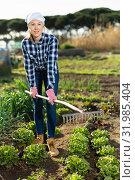 Купить «Positive farmer girl with rake in garden beds», фото № 31985404, снято 7 марта 2019 г. (c) Яков Филимонов / Фотобанк Лори