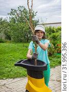 Купить «Работа с измельчителем садового мусора», фото № 31995396, снято 5 августа 2019 г. (c) Александр Романов / Фотобанк Лори