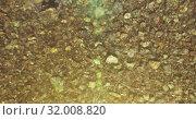 Купить «Mid air flight over fresh and clean mountain river at sunny summer morning. Top view and horizontal movement», видеоролик № 32008820, снято 2 июня 2017 г. (c) Александр Маркин / Фотобанк Лори