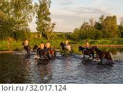 Купить «Молодые люди пересекают реку верхом на лошадях рано утром», фото № 32017124, снято 1 июня 2014 г. (c) Наталья Волкова / Фотобанк Лори