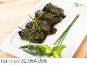 Купить «Tasty grape rolls in leaves at plate, traditional dish of Bulgarian cuisine», фото № 32064056, снято 28 марта 2020 г. (c) Яков Филимонов / Фотобанк Лори