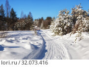 Купить «Winter landscape. The road in the sunlit forest among the snowdrifts and trees covered with snow», фото № 32073416, снято 6 марта 2019 г. (c) Юлия Бабкина / Фотобанк Лори