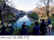 Japan, Honshu, Tokyo, Kudanshita, Chidori-ga-fuchi, Group of Photographers Filming Cherry Blossom. Стоковое фото, фотограф Steve Vidler / age Fotostock / Фотобанк Лори