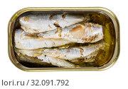 Купить «Tin can with smoked sprats, sardines, closeup», фото № 32091792, снято 14 декабря 2019 г. (c) Яков Филимонов / Фотобанк Лори