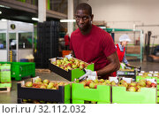 Купить «Afro workman carrying box with harvested pears», фото № 32112032, снято 12 ноября 2019 г. (c) Яков Филимонов / Фотобанк Лори