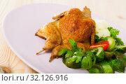 Купить «Grilled quail with vegetables and greens», фото № 32126916, снято 26 января 2020 г. (c) Яков Филимонов / Фотобанк Лори