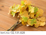Купить «oak leaves in autumn colors on wooden table», фото № 32131828, снято 13 сентября 2018 г. (c) Syda Productions / Фотобанк Лори