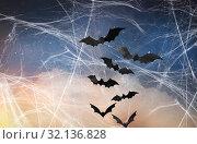 Купить «black bats over starry night sky and spiderweb», фото № 32136828, снято 6 июля 2017 г. (c) Syda Productions / Фотобанк Лори