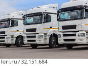 New white trucks for sale. Стоковое фото, фотограф Юрий Бизгаймер / Фотобанк Лори