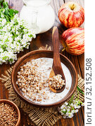 Купить «Buckwheat porridge with milk i», фото № 32152508, снято 13 мая 2019 г. (c) Надежда Мишкова / Фотобанк Лори