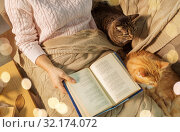 Купить «red and tabby and owner reading book at home», фото № 32174072, снято 15 ноября 2017 г. (c) Syda Productions / Фотобанк Лори