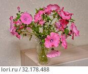 Autumn, colored floral bouquet in a vase. Стоковое фото, фотограф Владимир Аликин / Фотобанк Лори