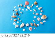 Купить «frame of different sea shells on blue background», фото № 32182216, снято 20 ноября 2018 г. (c) Syda Productions / Фотобанк Лори