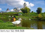 Купить «Высоцкий мужской монастырь, монастырский пруд с гусями и утками, Серпухов», фото № 32184568, снято 3 сентября 2019 г. (c) Natalya Sidorova / Фотобанк Лори