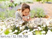 Купить «happy woman smelling chamomile flowers in garden», фото № 32198708, снято 12 июля 2019 г. (c) Syda Productions / Фотобанк Лори