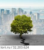 Купить «New life concept with sprout growing through crack», фото № 32203624, снято 21 февраля 2020 г. (c) Elnur / Фотобанк Лори