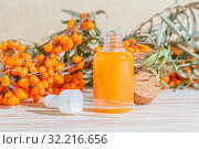 Cosmetology, traditional alternative medicine, herbal medicine, natural herbal cosmetics, sea buckthorn oil in a glass jar with a pipette on the background of the table, healthy juice from the harvest. Стоковое фото, фотограф Светлана Евграфова / Фотобанк Лори