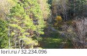 Купить «Aerial video from lifting up drone of colorful park at Autumn season and pond. Fall natural background», видеоролик № 32234096, снято 28 сентября 2019 г. (c) Serg Zastavkin / Фотобанк Лори