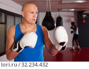 Portrait of boxer wearing gloves at boxing hall. Стоковое фото, фотограф Яков Филимонов / Фотобанк Лори