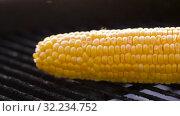 Купить «corn roasting on brazier grill outdoors», видеоролик № 32234752, снято 20 сентября 2019 г. (c) Syda Productions / Фотобанк Лори