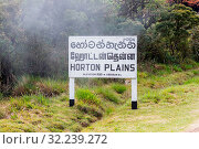 Купить «The Horton Plains National Park. This plateau at an altitude of 2,100?2,300 metres is rich in biodiversity and many species found here are endemic to the region», фото № 32239272, снято 7 июня 2020 г. (c) easy Fotostock / Фотобанк Лори