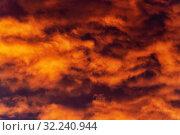 Красивые золотистые облака подсвеченные лучами солнца на закате плывут по фиолетовому небу. Стоковое фото, фотограф А. А. Пирагис / Фотобанк Лори