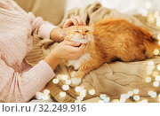 Купить «close up of owner stroking red cat in bed at home», фото № 32249916, снято 15 ноября 2017 г. (c) Syda Productions / Фотобанк Лори