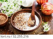 Купить «Гречневая каша с молоком на столе», фото № 32255216, снято 13 мая 2019 г. (c) Надежда Мишкова / Фотобанк Лори