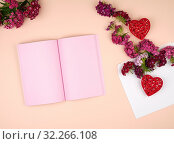 Open notebook with pink blank pages and Turkish carnation Dianthus barbatus flower buds and a white paper envelope on a peach background, top view. Стоковое фото, фотограф Natalya Danko / easy Fotostock / Фотобанк Лори