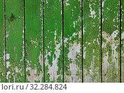 Old green wood surface. Стоковое фото, фотограф Константин Колосов / Фотобанк Лори