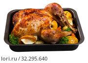 Купить «Turkey baked with vegetables and apples», фото № 32295640, снято 6 декабря 2019 г. (c) Яков Филимонов / Фотобанк Лори