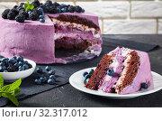 Купить «festive cake, blueberry and blackberry sponge cake», фото № 32317012, снято 13 июля 2019 г. (c) Oksana Zh / Фотобанк Лори