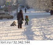 Купить «Прогулка зимним днём», эксклюзивное фото № 32342144, снято 29 января 2017 г. (c) Елена Осетрова / Фотобанк Лори