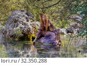 The elf women during Halloween in the forest by the river. Стоковое фото, фотограф Татьяна Ляпи / Фотобанк Лори