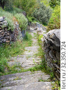 Narrow path with stone stairs in the mountains (Cyclades, Andros Island, Greece) (2019 год). Стоковое фото, фотограф Татьяна Ляпи / Фотобанк Лори