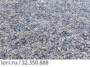 Купить «Pebble on the sea coast», фото № 32350888, снято 1 августа 2015 г. (c) Юрий Бизгаймер / Фотобанк Лори