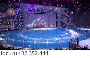 Купить «Presentation (Show) VDNKh Moskvarium - the biggest in Europe sea aquarium and entertainment center, Moscow, Russia», видеоролик № 32352444, снято 31 октября 2019 г. (c) Владимир Журавлев / Фотобанк Лори