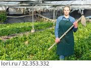 Купить «Portrait of woman worker in greenhouse», фото № 32353332, снято 3 октября 2018 г. (c) Яков Филимонов / Фотобанк Лори