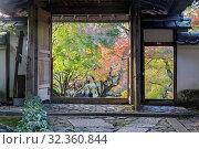 Купить «Autumn color in Anraku-ji temple in Kyoto, Japan, Asia», фото № 32360844, снято 22 ноября 2018 г. (c) age Fotostock / Фотобанк Лори