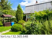 Купить «Wooden house with blossoming garden», фото № 32365648, снято 31 июля 2016 г. (c) Юрий Бизгаймер / Фотобанк Лори